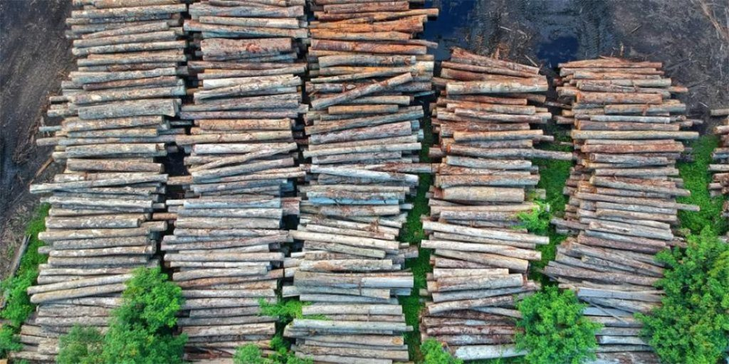 Lumber Prices in Canada